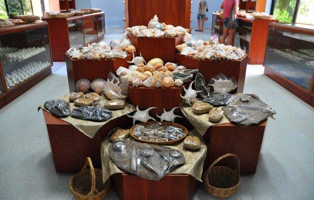 Музей морских раковин на Пхукете