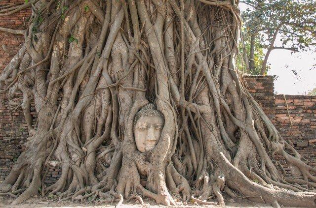 Аюттайя Wat Maha That