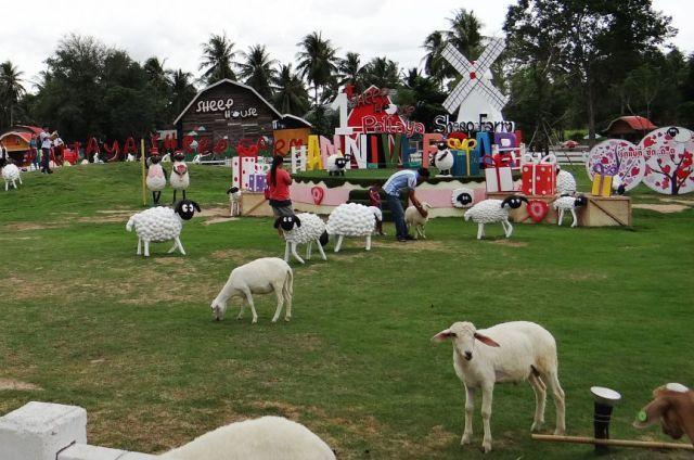 Овечья ферма в Паттайе
