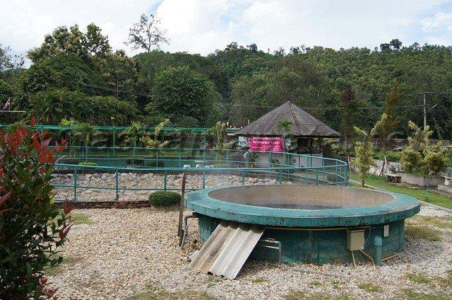 горячий источник Pha Soet Hot Spring в Чианграй