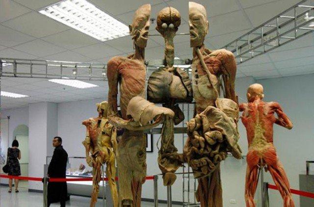 Музей медицины Сирирай в Бангкоке