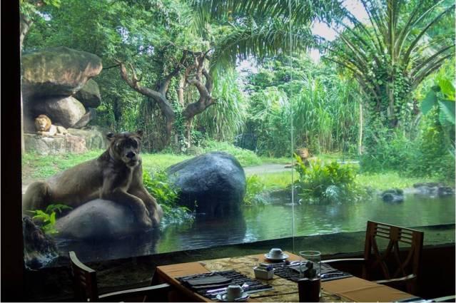 сафари парк Бали Сафари парк на Бали Сафари парк на Бали (Bali Safari and Marine Park) – парк дикой природы для всей семьи: наблюдение за животными, катание на слонах и аквапарк. safari park 1