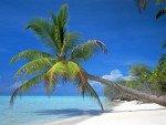 Пляжи Самуи – 14 лучших пляжей
