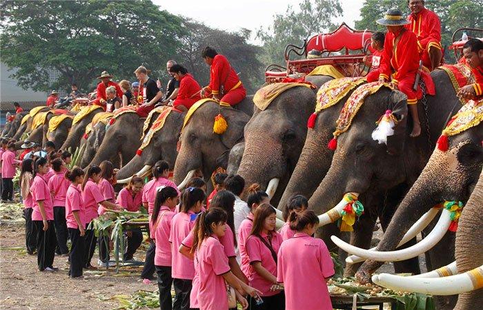 Праздник Слона