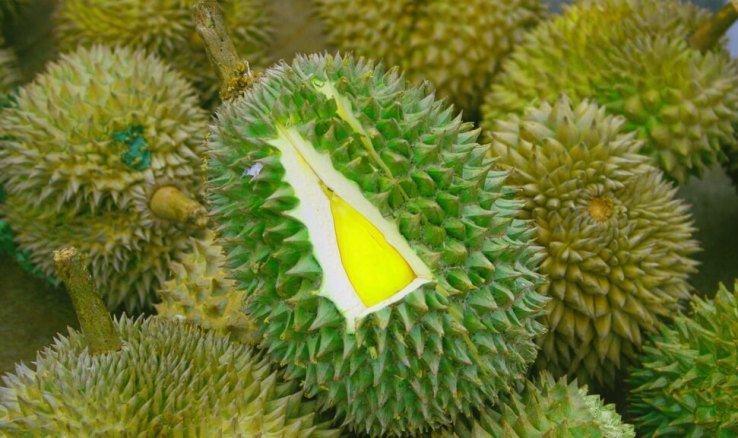 Как довезти фрукты из тайланда