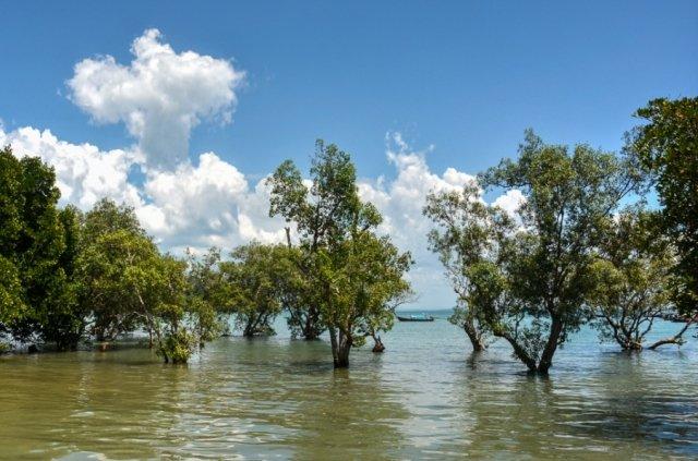 Пляж Восточный Рейли в Краби