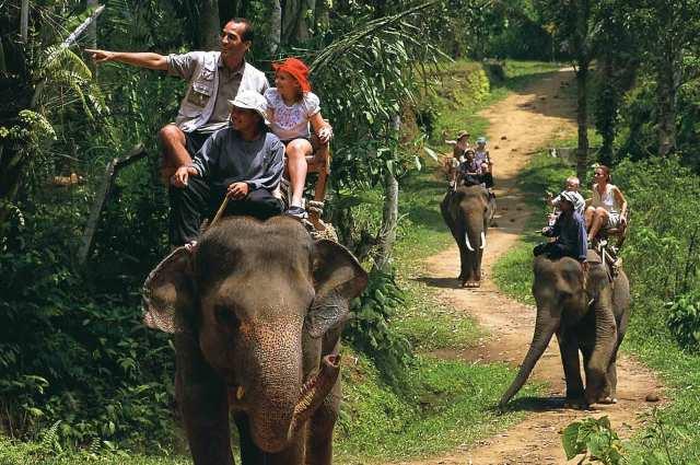 Катание на слонах на ко чанге