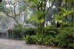 Сезон дождей на острове Самуи