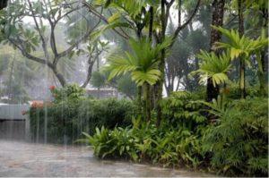 Сезон дождей на Пхукете
