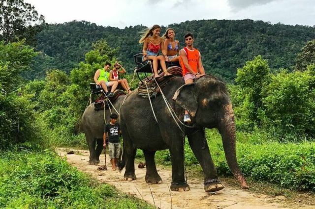 катание на слонах на Самуи