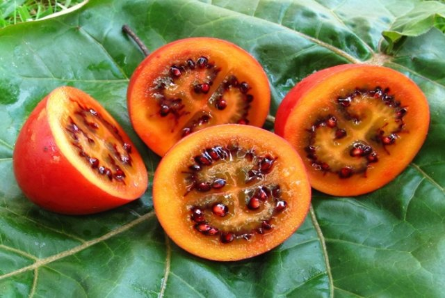 фрукт тамарилло