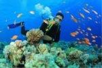 Дайвинг на острове Бали