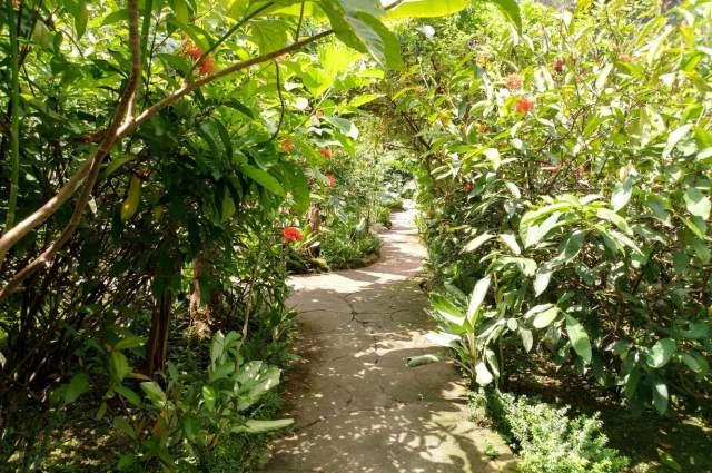 Парк Bali Butterfly Park