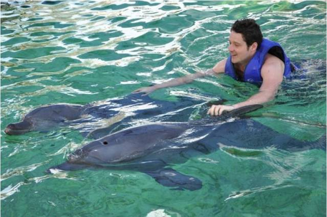Дельфинарий отеля Melka