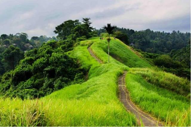 Тропа художников на Бали