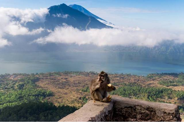 Смотровые площадки на Бали