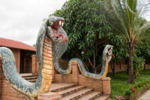 Ферма змей в Нячанге