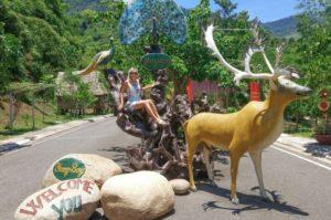 Эко-парк Янг Бей в Нячанге