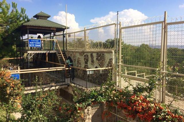 Зоопарк Анталии